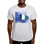NPA Ash Grey T-Shirt