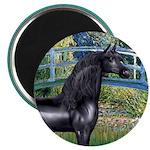 Bridge/Arabian horse (blk) Magnet