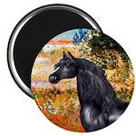 Garden/Arabian horse (blk) Magnet