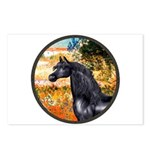 Garden/Arabian horse (blk) Postcards (Package of 8