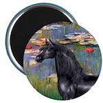 Lilies/Arabian horse (blk) Magnet
