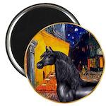 Cafe/Arabian horse (blk) Magnet