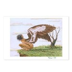 Jessica's Shearwater: Postcards (Package of 8)
