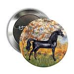Spring/Arabian horse (blk) 2.25
