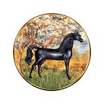 Spring/Arabian horse (blk) 3.5