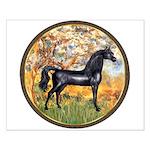 Spring/Arabian horse (blk) Small Poster