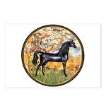 Spring/Arabian horse (blk) Postcards (Package of 8