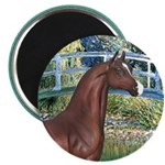 Bridge/Arabian horse (brn) 2.25