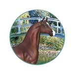 Bridge/Arabian horse (brn) 3.5