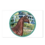 Bridge/Arabian horse (brn) Postcards (Package of 8