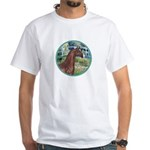Bridge/Arabian horse (brn) White T-Shirt