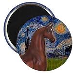 Starry/Arabian horse (brn) Magnet