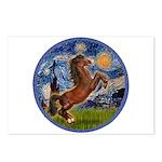 Starry/Arabian horse (brn) Postcards (Package of 8