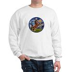 Starry/Arabian horse (brn) Sweatshirt