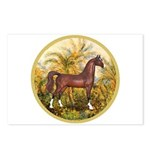Palms/Arabian horse (w) Postcards (Package of 8)