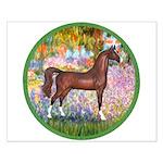 Garden/Arabian horse (brn) Small Poster