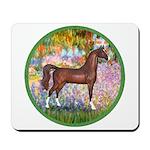 Garden/Arabian horse (brn) Mousepad