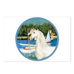 Sailboats/Arabian Horse (w) Postcards (Package of