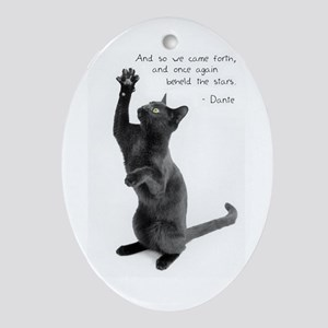Captivated Cat-And-Quote Oval Ornament