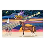 XmsStar/Horse (Ar-Br) Postcards (Package of 8)
