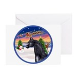 TakeOff2/Horse (Ar-blk) Greeting Cards (Pk of 20)
