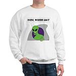 ALIENS and UFO's Sweatshirt