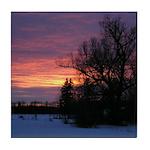 Winter Sunset 0020 Tile Coaster