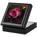 Red Castera Rose #1A - Photo Drawing - Tile Box