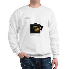 Toucan on Black Sweatshirt