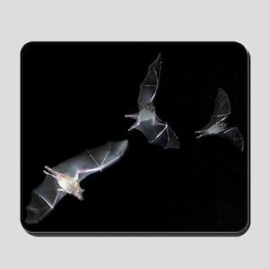 Bat Mousepad 3
