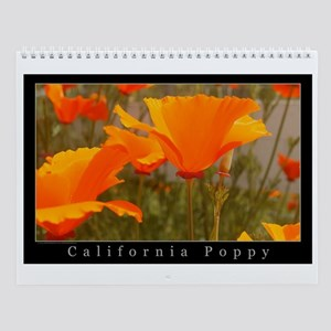 California Poppy 2006 Wall Calendar
