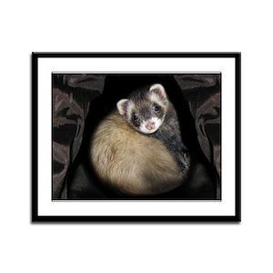 Full Cute Ferret Face Framed Panel Print