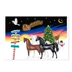 XmsSigns/3 Horses (Ar) Postcards (Package of 8)