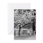 Park Bench Greeting Cards (Pk of 10)