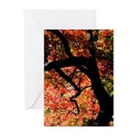Red Tree Greeting Cards (Pk of 10)