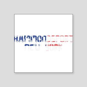 Hammondsport New York Sticker