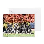 2019 Ridgewood Greeting Cards (Pk of 10)