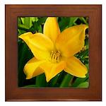 Framed Tile - Lilly