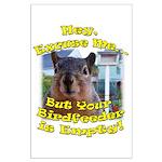 Squirrel Your Birdfeer Is Empty L Posters
