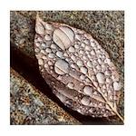 Leaf Ceramic Tiles & Coasters Tile Coaster