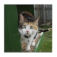 Sneeky Kitty Coasters Tile Coaster