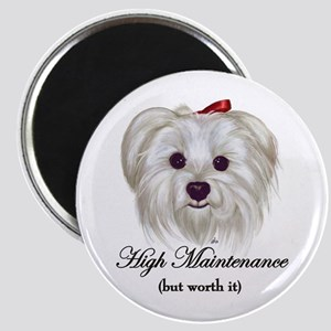 Captioned Maltese Magnet