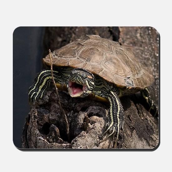 Mad Turtle Mousepad