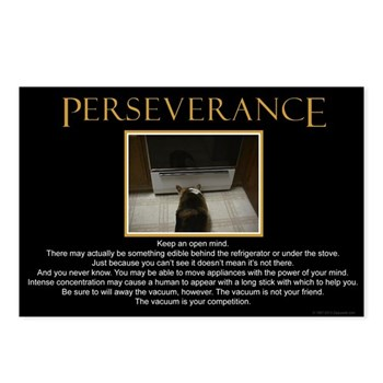 Perseverance Postcards (8 pack)
