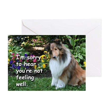 Get Well Sheltie Fetch Cards (Pk of 20)