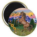 Mt Country/Horse (Ar-Brn) Magnet