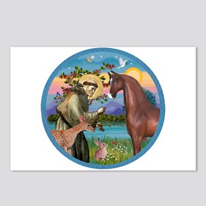 St Francis/Horse (Ar-Brn) Postcards (Package of 8)