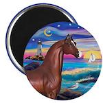 Wave/Horse( Ar-Brn) Magnet