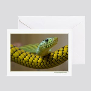 snake / reptile Greeting Cards (Pk of 10)