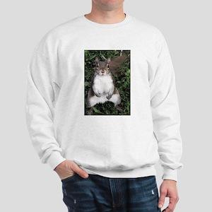 Pretty Please Squirrel Sweatshirt